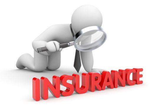 保険に注目する人